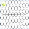 ステンレス鋼ワイヤー六角形の金網か1/2の - 2 六角形の網