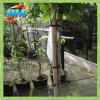 Украшение сада Bamboo Поляк