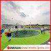 50mmの単繊維のフットボール裁判所の合成物質の草