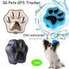 Nuevo diseño de soporte GPS Tracker Red 3G WCDMA (V40).