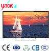 Heißer voller HD 720p Porm China Preis Asien-in Video LED Indien-Xxx Fernsehapparat