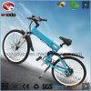 Bicicletta elettrica della batteria di litio del motorino della montagna della bici per l'adulto