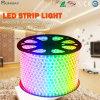 SMD 5050 RGB LEIDENE Licht van de Strook