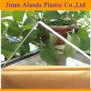 La fabrication de feuilles en plexiglas transparent clair MMA