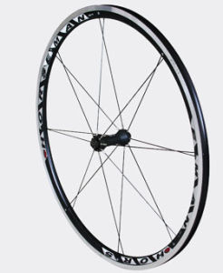 Bicycle/Bike Aluminium/Alloy Wheel Rim