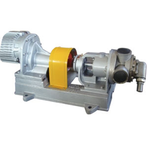 NYP Series Internal Gear Pump with Safety Valve pictures & photos
