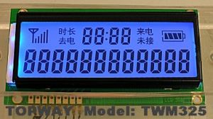 Tn LCD Display Segment Type LCD Module (TWM325-1) pictures & photos