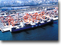Transport Cargo by Sea to Europe&Mediterranean Sea