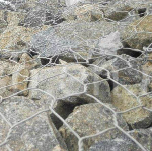 50mm X 50mm Hexagonal Wire Netting with pictures & photos