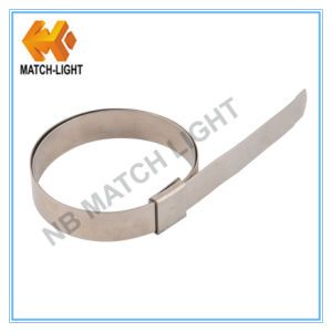Stainless Steel 201 Center Punch Hose Clamp for Australian Market pictures & photos