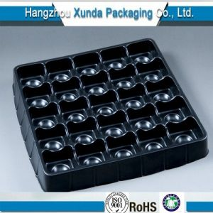 Quality Assurance Chocolate Disposable Blister PP Plastic Food Tray