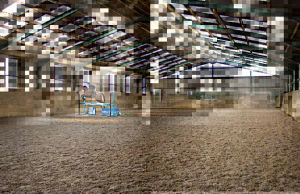 China Horse Arena, Horse Arena Manufacturers, Suppliers