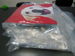 Cushion Vacuum Packing Machine with Plastic Bag pictures & photos
