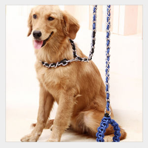 Dog Chain for Dog Pet Product Dog Leash Supply