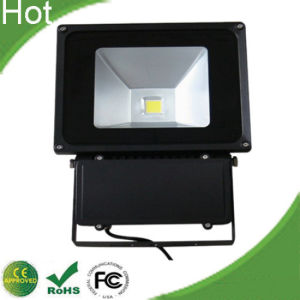 30W Waterproof Outdoor LED Flood Light IP66 5 Years Warranty pictures & photos
