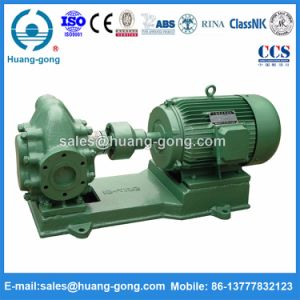 2cy12/3.3 Gear Pump for Vegetable Oil Transfer pictures & photos