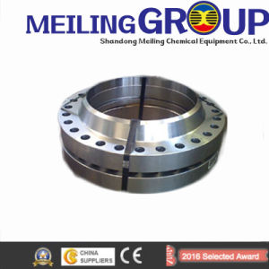 ANSI Standard Steel Forged Pipe Weld Neck Flange pictures & photos