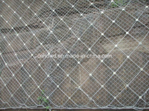 Supplier of Side Slope Protecting Mesh pictures & photos