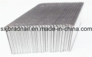 Brad Head Nails/Furniture Iron Nails Factory pictures & photos
