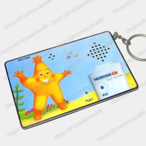 Key Chain, Keychains, Digital Keychain, Music Keychains pictures & photos