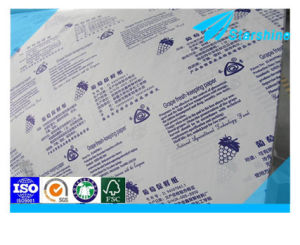 100% Wood Pulp Single Side PE Coated Paper