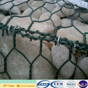 2015 Gi Wire PVC Coated Gabion Mesh (XA-GM14) pictures & photos