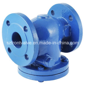 Cast Iron/Ductile Iron Swing Check Valve pictures & photos