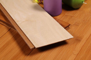 Toast Horizonal HDF Bamboo Flooring pictures & photos