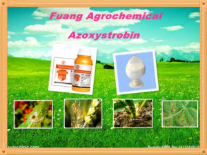 New Fungicide Azoxystrobin 95%Tc, 25%Sc, 50%Cl, 25%Wdg Fungicide Azoxystrobin pictures & photos