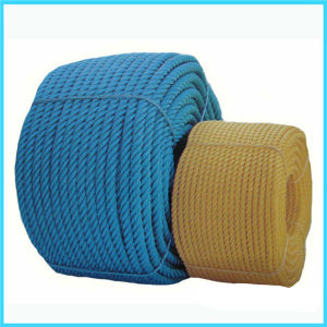 10mm 12-Strand UHMWPE Hollow Braid Mooring Rope pictures & photos