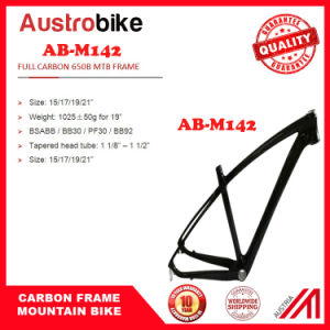 Made in China Carbon Bike Frame Mountain MTB Carbon Frame