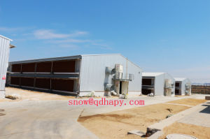 Prefabricated Poultry House with Light Steel Structure Installation pictures & photos