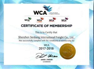 Shenzhen to Red Sea Best Sea Freight