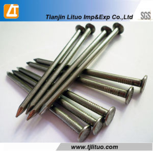 Q195 Wire Rod Material Poilished Common Wire Nails pictures & photos