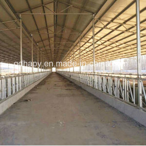 High Quality Steel Structure Livestock Farm Construction pictures & photos