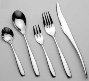 Stainless Steel Cutlery Set (WZS-0632)