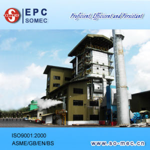 Wood Chip Fired Power Plant EPC Contractor pictures & photos