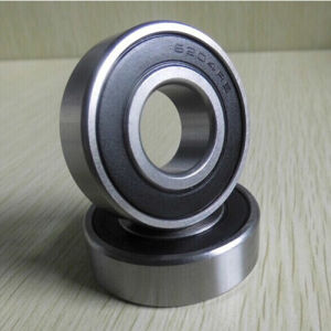 6004 2RS Bearing 6000 2RS 6201 2RS 6204 2RS 6310 2RS