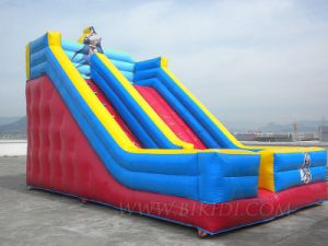 Inflatable Slides, Water Slides, Theme Slide Inflatables (B4075) pictures & photos
