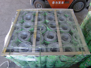 Galvanized Barbed Iron Wire pictures & photos
