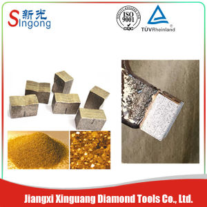 China Sintering Diamond Granite Cutting Segments pictures & photos