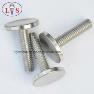 Stainless Steel 304 Bolt/ Ss 304 Flat Head Bolt pictures & photos
