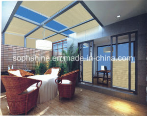Insulated Glass Shading or Partition with Honeycomb Blinds Motorized Inside