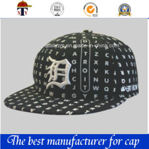 3D Flat Brim Baseball Cap/Sports Hat