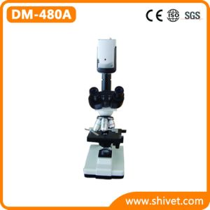 Binocular Video Microscope with CCD Camera (DM-480A) pictures & photos