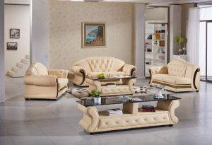 Modern Sofa with Genuine Leather Furniture Set for Home Sofa