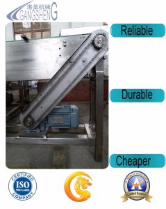 China Manufacturer Conveyor for Variety Use pictures & photos