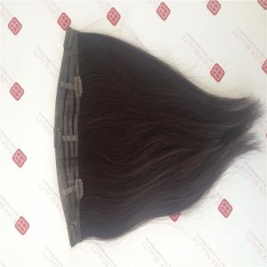 Clip in Tape Hair Clip in Extensions 100% Human Hair Virgin Hair pictures & photos