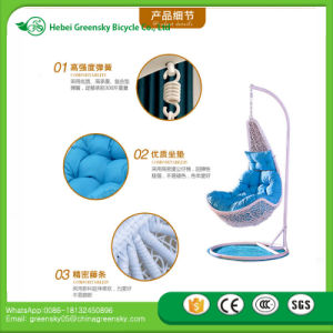 2017 Hot Supply Europeanismcane Hanging Chair Top Quality Cane Swing Chair to Oversea Market pictures & photos