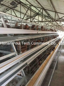 Poul Tech Layer Chicken Cage Wire Mesh (poultry equipment) pictures & photos